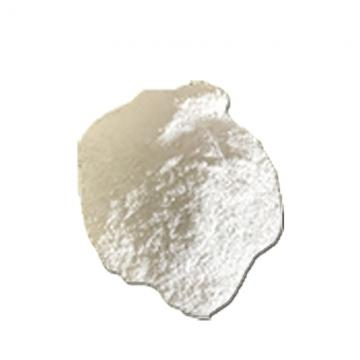 pH Increaser Soda Ash Dense of Pool Chemicals (SA001)